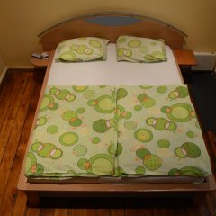 Elegance Hostel and Guesthouse Номер Комфорт с различными типами кроватей фото 6