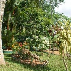 Отель Lanka Rose Guest House Шри-Ланка, Берувела - отзывы, цены и фото номеров - забронировать отель Lanka Rose Guest House онлайн фото 16