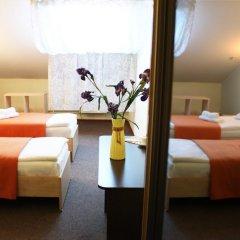 Гостиница Ирис 3* Стандартный номер разные типы кроватей фото 29