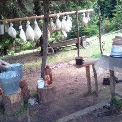 Гостиница Cottage v Gorakh Украина, Поляна - отзывы, цены и фото номеров - забронировать гостиницу Cottage v Gorakh онлайн фото 3