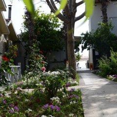 Andiz Beach Hotel фото 10