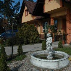 Отель Dworek Novello Польша, Эльганово - отзывы, цены и фото номеров - забронировать отель Dworek Novello онлайн фото 5