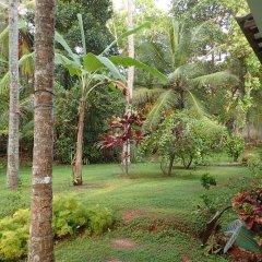 Отель Sheen Home stay Шри-Ланка, Пляж Golden Mile - отзывы, цены и фото номеров - забронировать отель Sheen Home stay онлайн фото 2