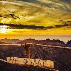 Отель Esperanza Petra Иордания, Вади-Муса - отзывы, цены и фото номеров - забронировать отель Esperanza Petra онлайн приотельная территория фото 2