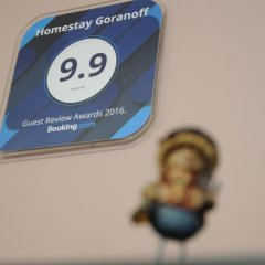 Отель Homestay Goranoff Болгария, Плевен - отзывы, цены и фото номеров - забронировать отель Homestay Goranoff онлайн интерьер отеля