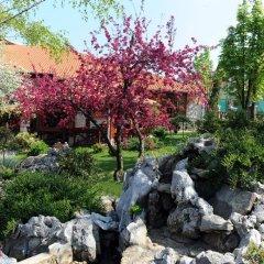 Отель Centar Balasevic Сербия, Белград - отзывы, цены и фото номеров - забронировать отель Centar Balasevic онлайн
