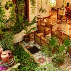 Отель Posada Mariposa Boutique Плая-дель-Кармен фото 11