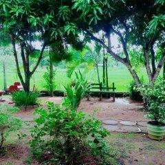 Отель Hansika Guest Inn Шри-Ланка, Бандаравела - отзывы, цены и фото номеров - забронировать отель Hansika Guest Inn онлайн фото 5