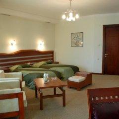Отель Vedzisi Тбилиси комната для гостей фото 3