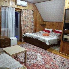 Гостевой дом Родник Номер Комфорт с различными типами кроватей фото 7