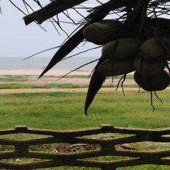 Отель Residence Saint-Jacques Bord de Mer Республика Конго, Пойнт-Нуар - отзывы, цены и фото номеров - забронировать отель Residence Saint-Jacques Bord de Mer онлайн приотельная территория