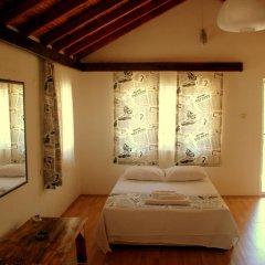 Гостевой Дом Dionysos Lodge Стандартный номер с двуспальной кроватью фото 8