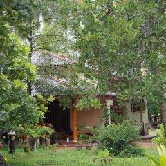 Отель Zum Deutschen Шри-Ланка, Бентота - отзывы, цены и фото номеров - забронировать отель Zum Deutschen онлайн фото 4
