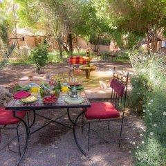 Отель Ecolodge - La Palmeraie Марокко, Уарзазат - отзывы, цены и фото номеров - забронировать отель Ecolodge - La Palmeraie онлайн помещение для мероприятий