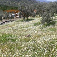 Natureland Efes 3* Стандартный номер с различными типами кроватей фото 19