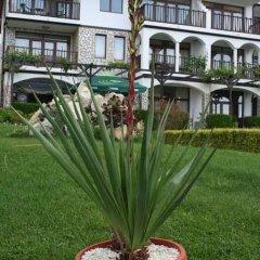Отель Complex Badem фото 2