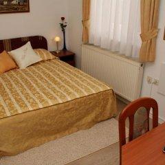 Hotel Vila Tina 3* Номер категории Эконом с различными типами кроватей фото 7