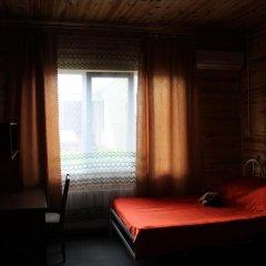 Mini-hotel Ekonomnaya Derevnia комната для гостей фото 2