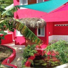 Отель Sunset Hill Lodge Французская Полинезия, Бора-Бора - отзывы, цены и фото номеров - забронировать отель Sunset Hill Lodge онлайн фото 13