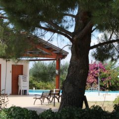Отель Agriturismo La Collinetta Италия, Нова-Сири - отзывы, цены и фото номеров - забронировать отель Agriturismo La Collinetta онлайн детские мероприятия