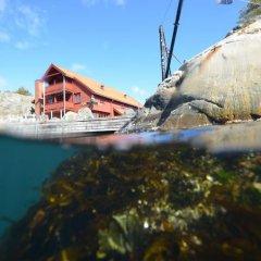 Отель Skottevik Feriesenter Норвегия, Лилльсанд - отзывы, цены и фото номеров - забронировать отель Skottevik Feriesenter онлайн пляж фото 2