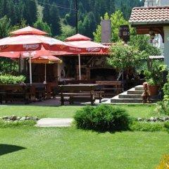Отель Family Hotel Shoky Болгария, Чепеларе - отзывы, цены и фото номеров - забронировать отель Family Hotel Shoky онлайн бассейн
