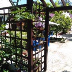 Гостиница Letniye Domiki Vacation Home фото 11
