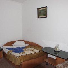 Санаторий Кристалл 2* Номер Комфорт с различными типами кроватей фото 4