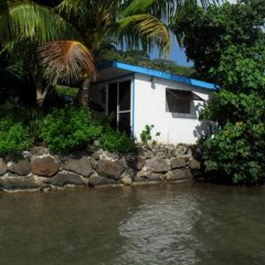 Отель Bora Bora Bungalove Французская Полинезия, Бора-Бора - отзывы, цены и фото номеров - забронировать отель Bora Bora Bungalove онлайн бассейн