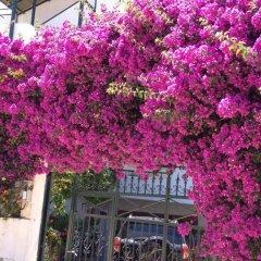 Отель Villa Oden Албания, Ксамил - отзывы, цены и фото номеров - забронировать отель Villa Oden онлайн