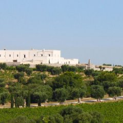 Отель Masseria Amastuola Wine Resort Криспьяно фото 4