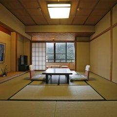 Отель Misasa Yakushinoyu Mansuirou 4* Стандартный номер