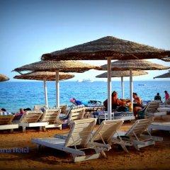 Elaria Hotel Hurgada пляж фото 2