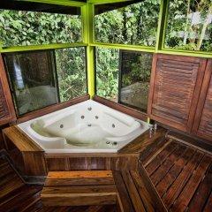 Отель Chachagua Rainforest Ecolodge 3* Стандартный номер с различными типами кроватей фото 4