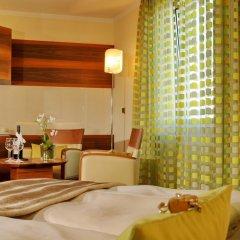 Hotel Torbrau 4* Номер Делюкс с различными типами кроватей фото 5