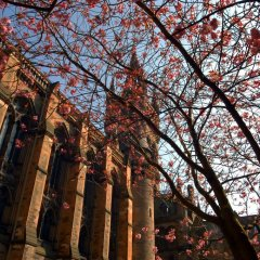 Glasgow Youth Hostel фото 4
