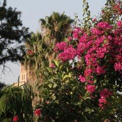 Отель Riad Majala Марокко, Марракеш - отзывы, цены и фото номеров - забронировать отель Riad Majala онлайн фото 3