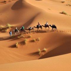 Отель Bivouac Jawhara Марокко, Мерзуга - отзывы, цены и фото номеров - забронировать отель Bivouac Jawhara онлайн приотельная территория