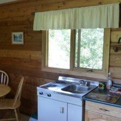 Отель Mica Mountain Lodge & Log Cabins в номере