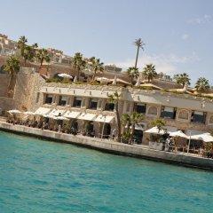 Отель Albatros Citadel Resort Египет, Хургада - 2 отзыва об отеле, цены и фото номеров - забронировать отель Albatros Citadel Resort онлайн приотельная территория
