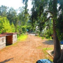 Medusa Camping Турция, Патара - отзывы, цены и фото номеров - забронировать отель Medusa Camping онлайн фото 4
