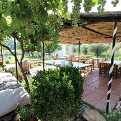 Отель Perix House Греция, Ситония - отзывы, цены и фото номеров - забронировать отель Perix House онлайн фото 4