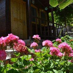Montenegro Motel Стандартный номер с двуспальной кроватью фото 22