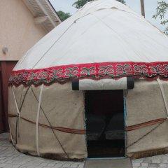 Отель Boorsok Hostel Bishkek Кыргызстан, Бишкек - отзывы, цены и фото номеров - забронировать отель Boorsok Hostel Bishkek онлайн комната для гостей фото 4