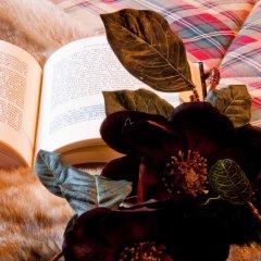 Gran Chalet Hotel & Petit Spa 3* Номер Премиум двуспальная кровать фото 3