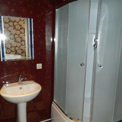 Мини-Отель Веселый Соловей Стандартный номер с различными типами кроватей фото 24