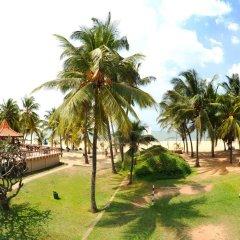 Отель Golden Star Beach Hotel Шри-Ланка, Негомбо - отзывы, цены и фото номеров - забронировать отель Golden Star Beach Hotel онлайн фото 2
