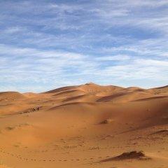 Отель Camels House Марокко, Мерзуга - отзывы, цены и фото номеров - забронировать отель Camels House онлайн приотельная территория