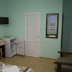 Гостиница Karolina Guest House в Анапе отзывы, цены и фото номеров - забронировать гостиницу Karolina Guest House онлайн Анапа удобства в номере фото 2