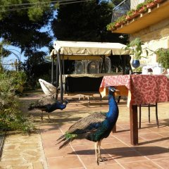 Отель B&B Villa San Marco 2* Стандартный номер фото 4